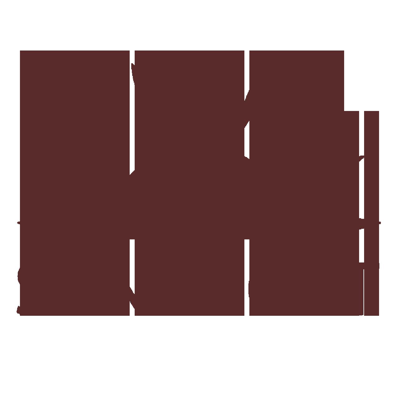 تولیدی کفش سان اسپورت - sun sport